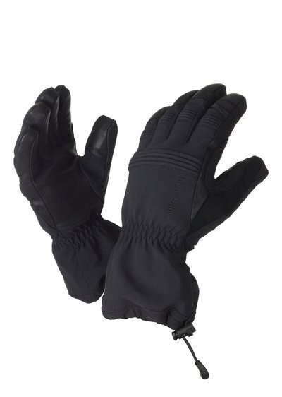 Sealskinz Extreme Cold Weather Glove black