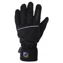Sealskinz Winter Technical Glove Black