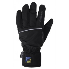 Sealskinz Winter Technical Glove Black